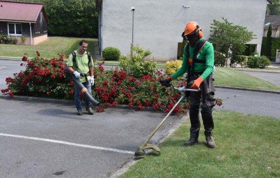 entretien création espaces verts
